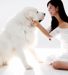 韩国美女明星李成敏高清电脑桌面壁纸美图写真