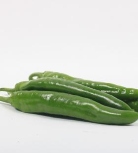 好吃美味的绿色尖椒高清壁纸图片大全