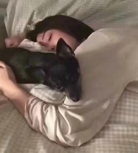 秀恩爱虐狗专用的真人情侣头像一人一张图片大全