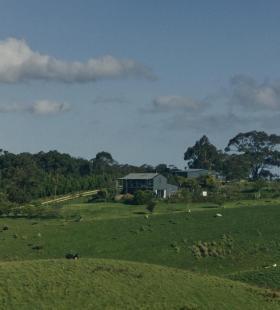 令人向往的绿色清新草原风景手机壁纸图片