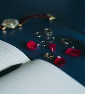 鲜红娇媚的红玫瑰唯美壁纸图片