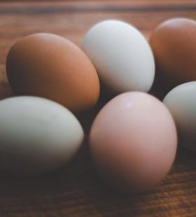 椭圆形的生鸡蛋艺术摆拍照美食图片大全